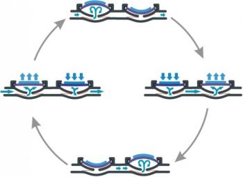 Bartels Mikrotechnik zeigt den Pumpzyklus der mp6 Mikropumpe. Die Piezopumpe aus dem Bereich der Mirofluidik und Mikrosystemtechnik ist klein aber stark.
